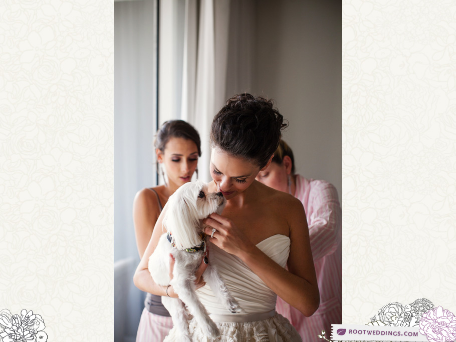 Root Weddings : W Hotel Ft. Lauderdale Bride and Dog