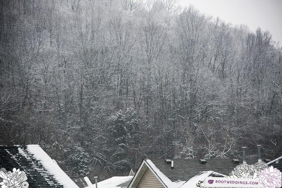 Snowy Nashville