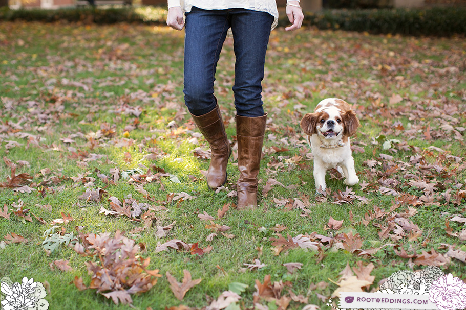 Nashville Fall Vanderbilt Campus Family Session with Dogs!