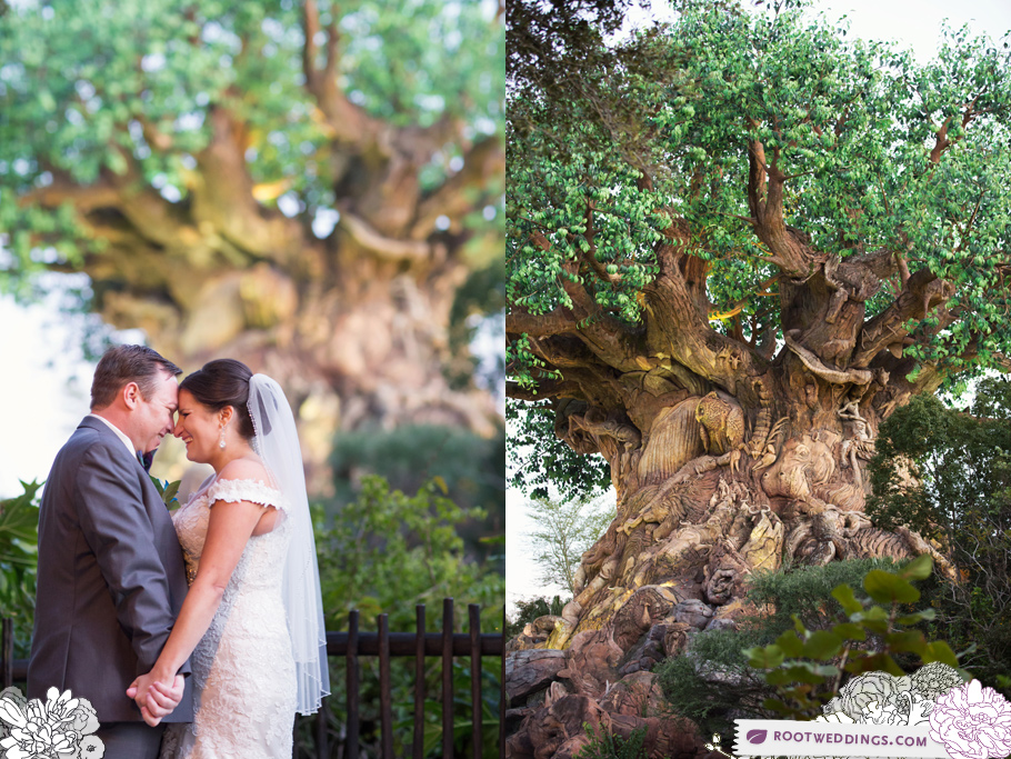 Disney Animal Kingdom Wedding Tree of Life